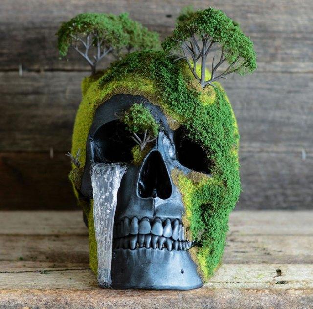 calavera-bonsai-jack-dust (2)