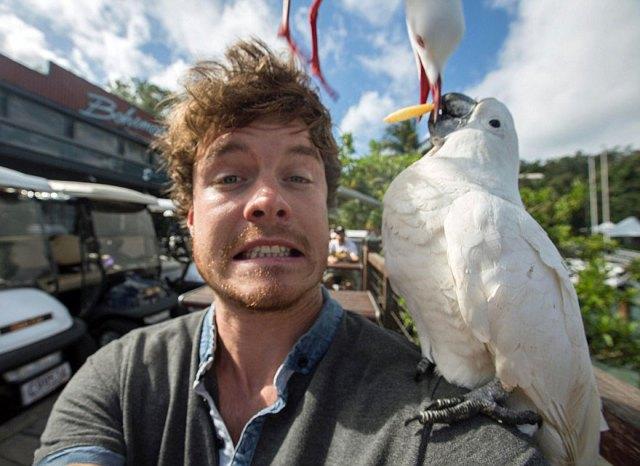 experto-selfies-animales-allan-dixon (13)