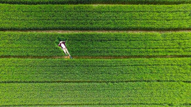 fotografia-aerea-drones-2015-dronestagram (2)