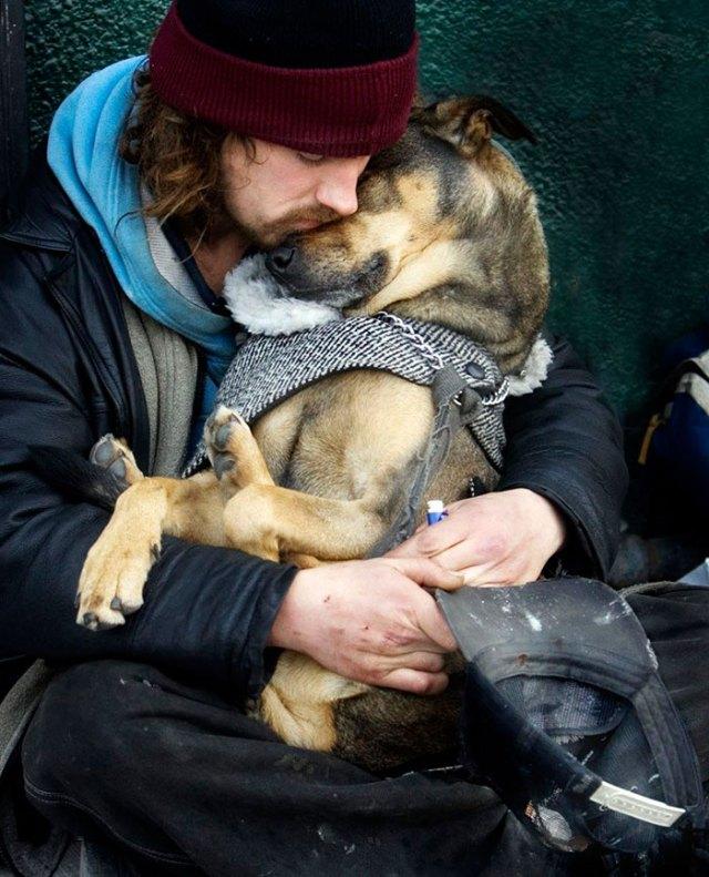 indigentes-perros-lealtad (12)