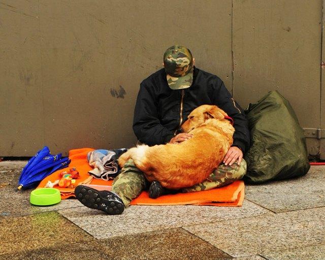 indigentes-perros-lealtad (14)