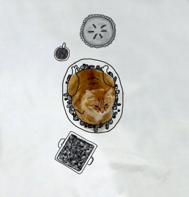 meme-foto-gato-dibujos-divertidos (5)