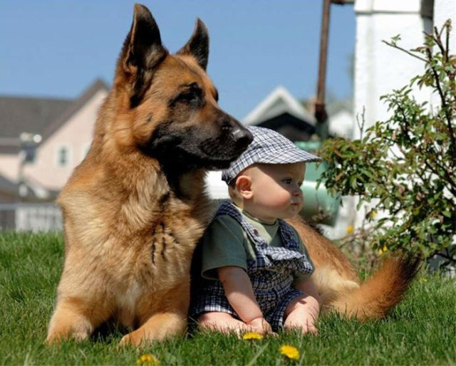 ninos-necesitan-mascotas (3)