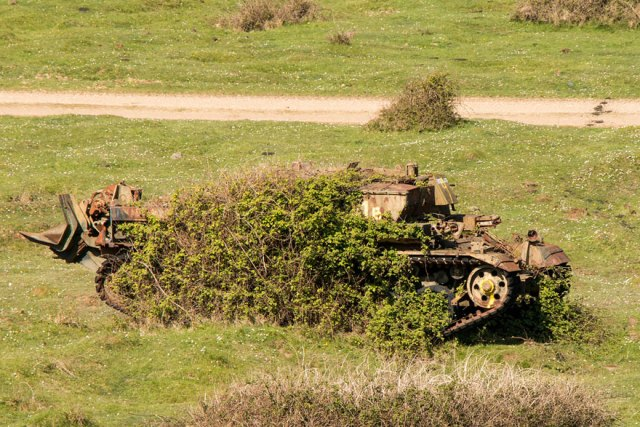 tanques-devorados-naturaleza (13)