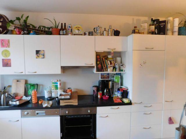encuentra-gato-pedro-cocina
