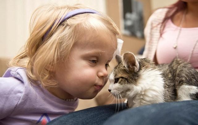 gato-nina-amputados-doc-scarlette-tipton (7)