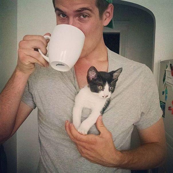 instagram-tios-buenos-gatos (11)