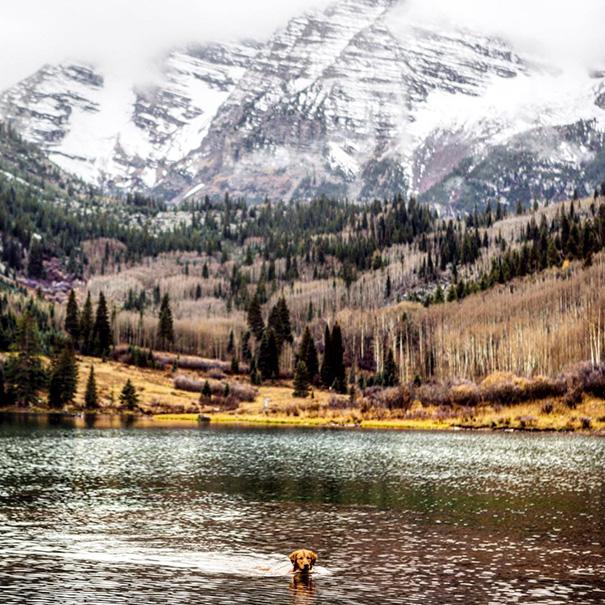 perro-aspen-viajes-aventura-hunter-lawrence (17)