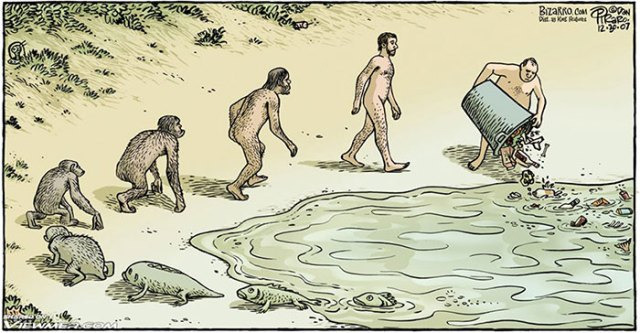 evolucion-dia-darwin (12)