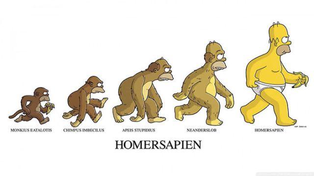 evolucion-dia-darwin (6)