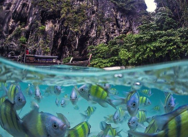fotos-sobre-bajo-agua (19)