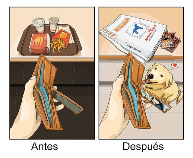 vida-antes-despues-perro-maimai-john (3)