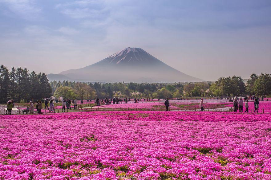 lugares-increibles-japon (14)