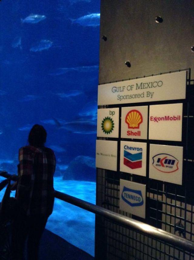 Golfo De México, Patrocinado Por...