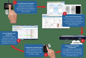 biometric fingerprint enrolment process