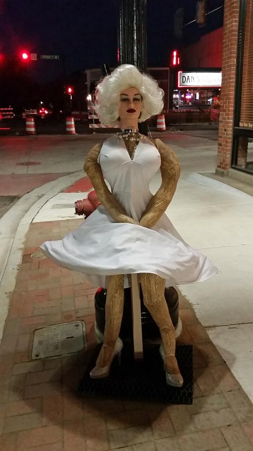 2016 Saline Scarecrow Contest Entries Borer Family Chiropractic  Chiropractor in Saline MI USA