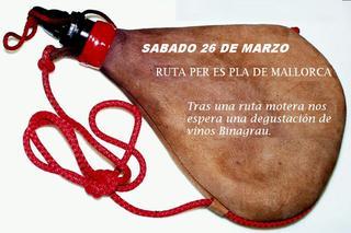 Ruta_des_pla_26_03_2011