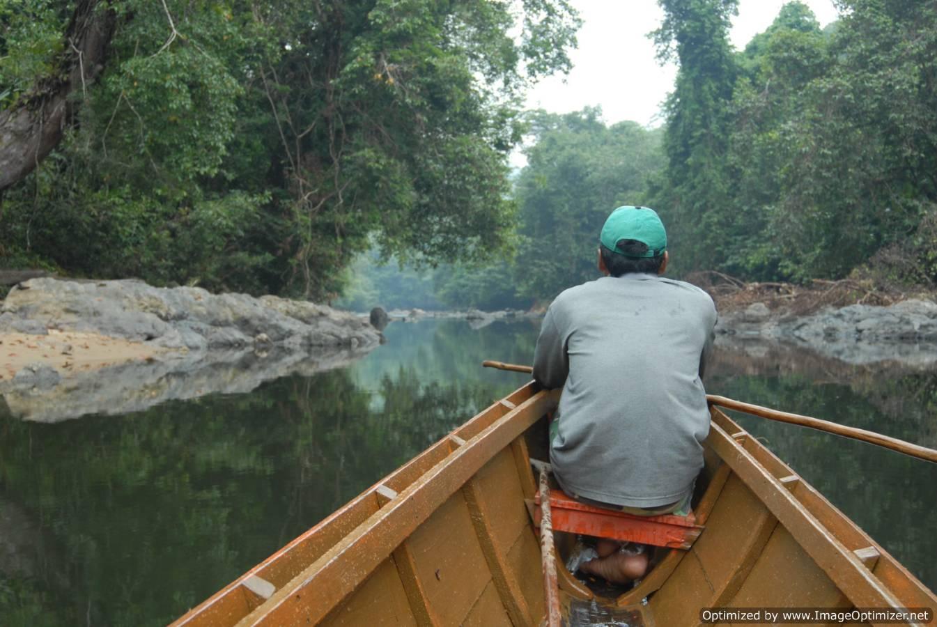 https://i0.wp.com/www.borneotourgigant.com/river.JPG