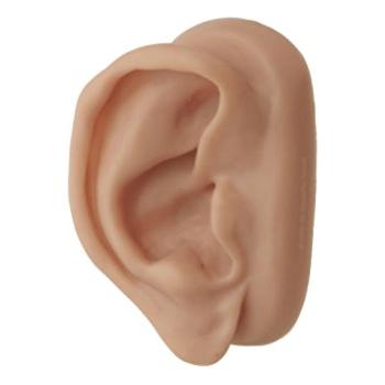 silicon ear