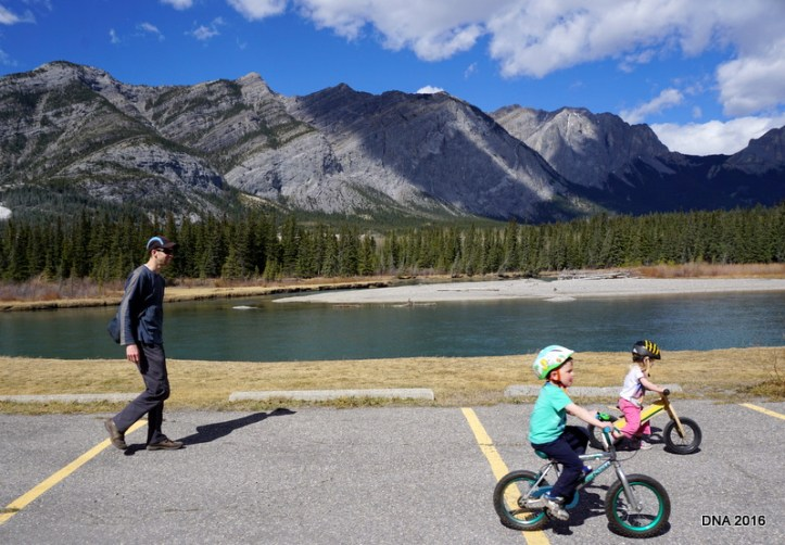 bike riding in the Canadian Rockies