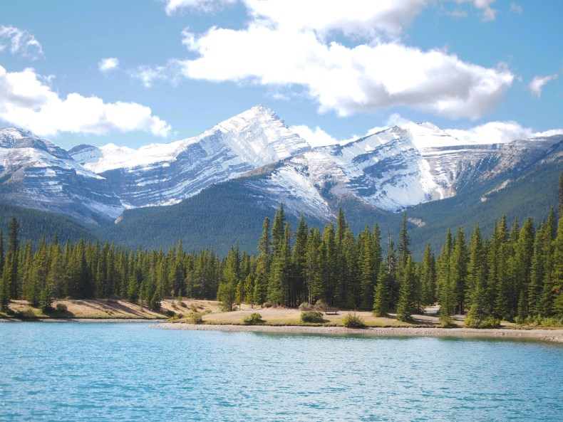 Easy Hikes Canmore - Forgetmenot Pond