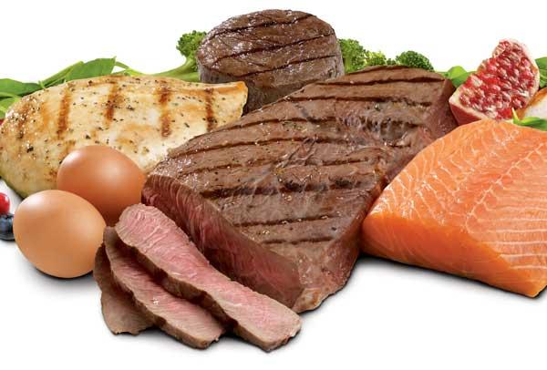 proteine-schaden-den-nieren-nicht