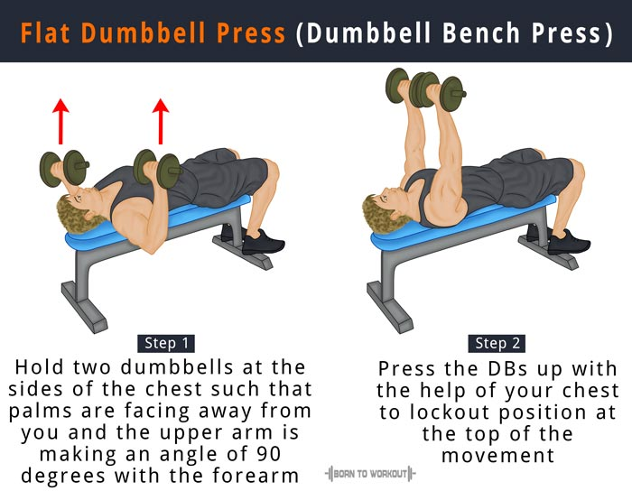 Dumbbell Flat Bench Chest Press