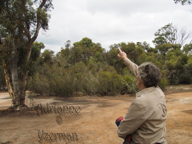Ayleen points to owl hollow