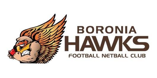 BHFNC_Logo 1 landscape