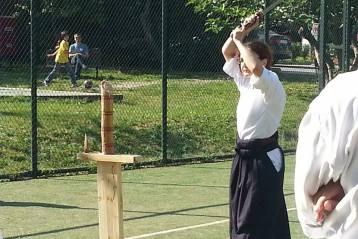 Kız Çocuğu Gözünden Aikido Oya Burçin Demirtaş