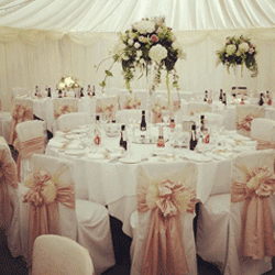 chair covers for sale gauteng extra wide rocking manufacturers of durban sa