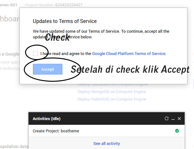 google api key baru accept