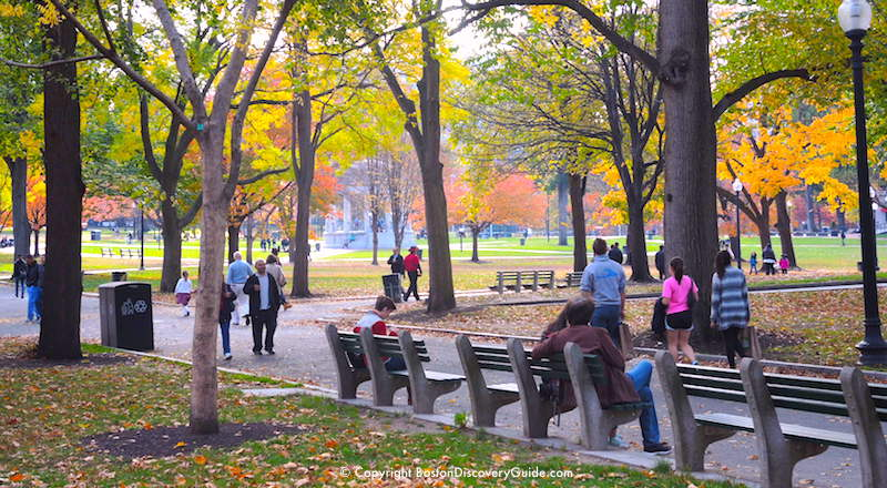 Fun Things To Do In Boston In November 2018 Activities