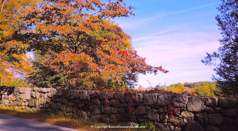 Vermont Fall Foliage Wallpaper Fall Foliage Tours 2018 Boston And New England Boston