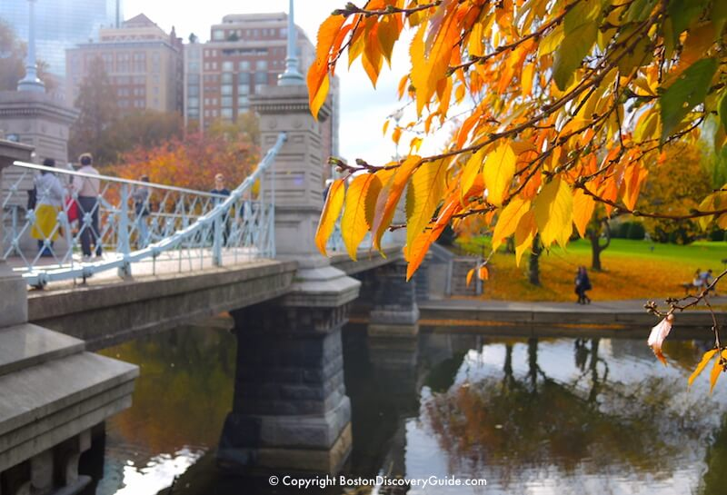 Boston Weather In November What To Expect Boston
