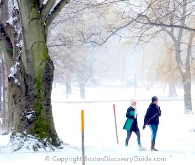 Extreme Boston Weather