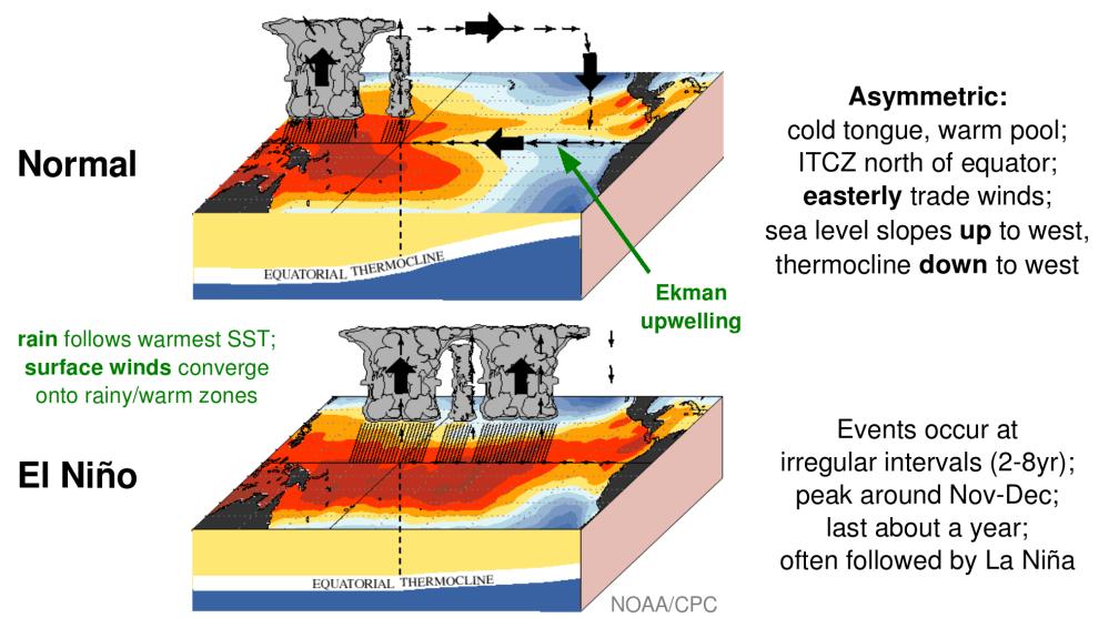 medium resolution of el nino and predictions for the winter boston comnormalversus el nino 92814 png