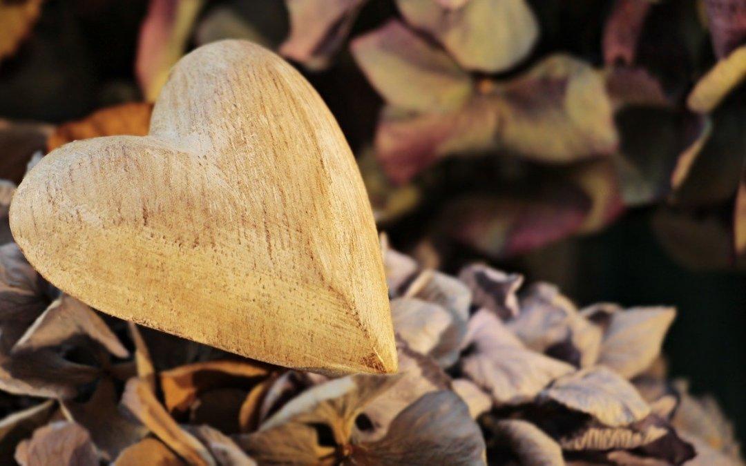 Monday Mood Booster: Gratitude