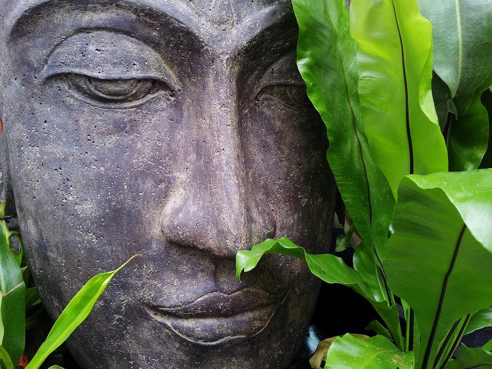 Tranquil Buddha statue in foliage