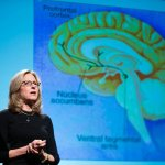 The Neuroscience Behind Why We Love,  Who We Choose  and Partnership Happiness
