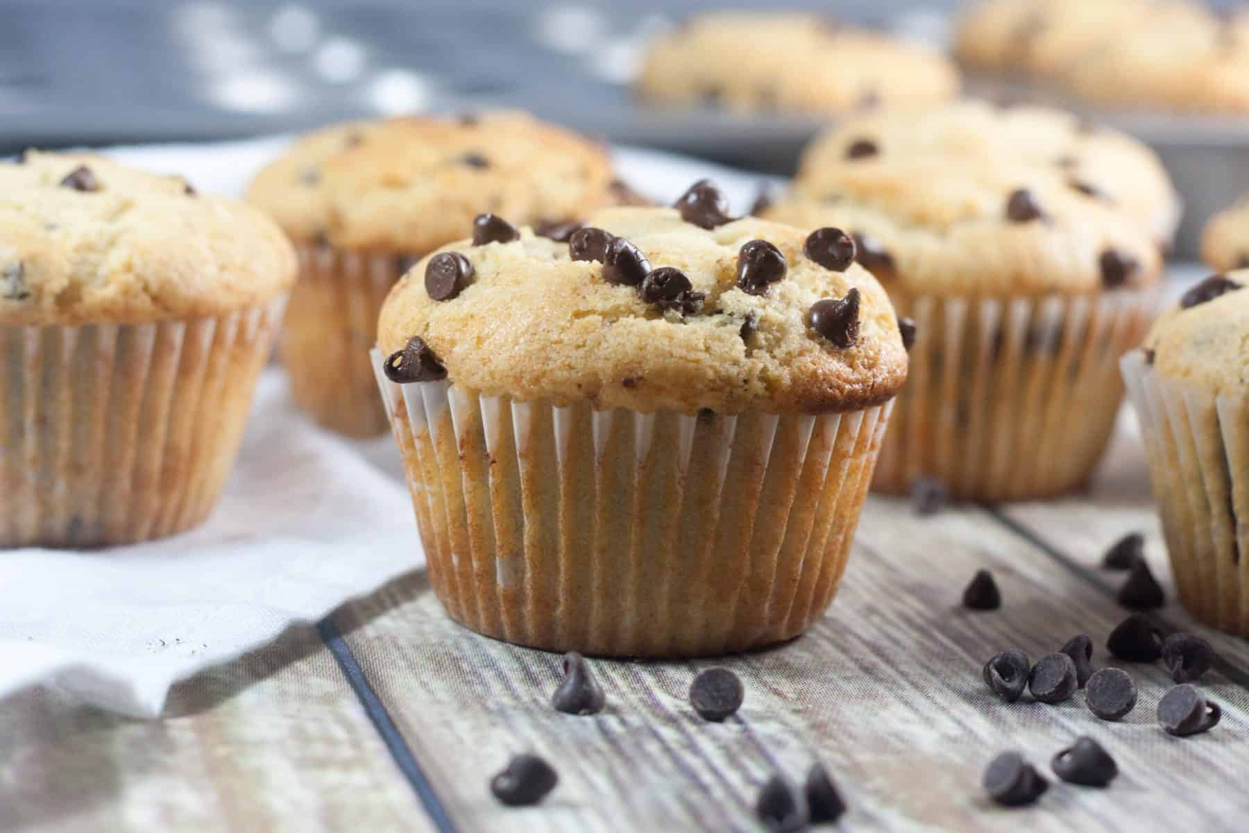 Lightened Up Chocolate Chip Muffins - Boston Girl Bakes
