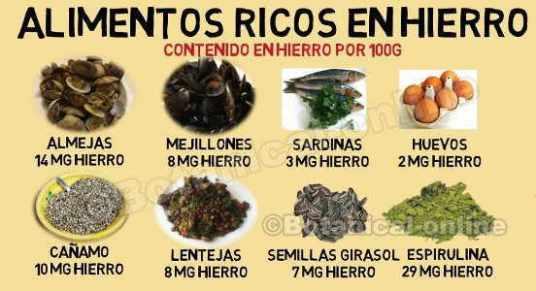 alimentos ricos en hierro dieta para la anemia