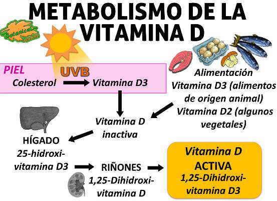 vitamina D beneficii