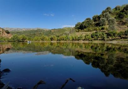 Βοτανικό Πάρκο- Κήποι Κρήτης: Λίμνη του πάρκου.