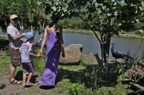 Βοτανικό Πάρκο και Κήποι Κρήτης: Λίμνη- Στιγμές Χαλάρωσης