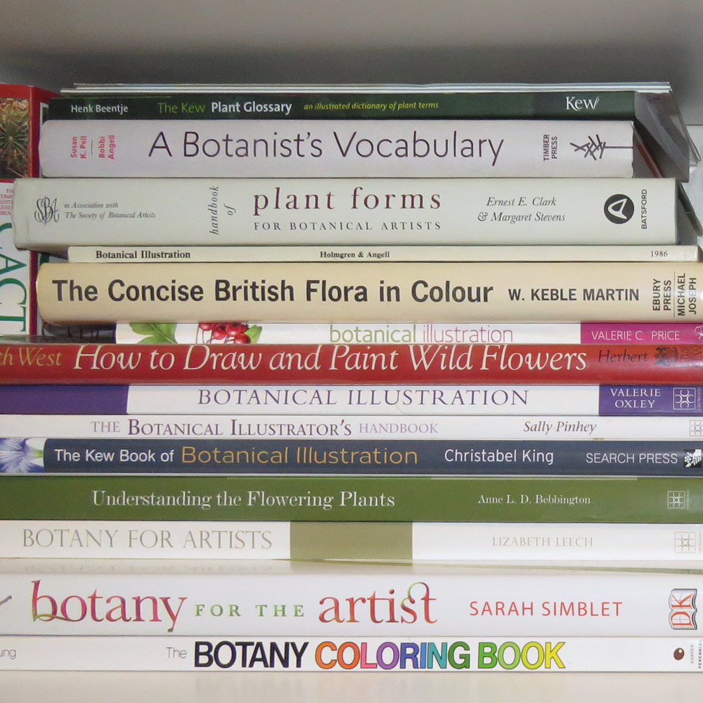 hight resolution of some of my books helpful to those wanting to understand more about botany for artists and botanical illustration
