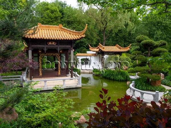 Bilder Chinesische Gärten Bilder Und Videos Von Pflanzen Und