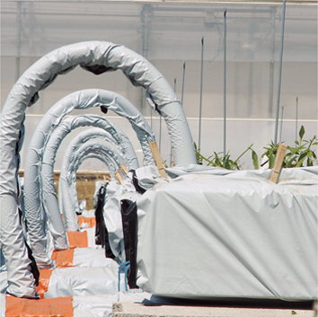 Control of hydroponic nitrate nutrition (Technical Article)