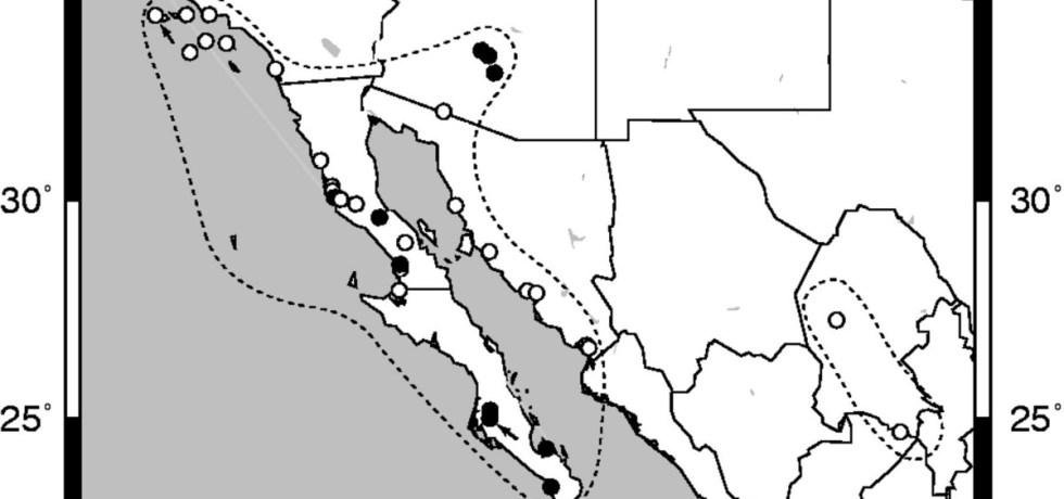 Populations of Lycium californicum