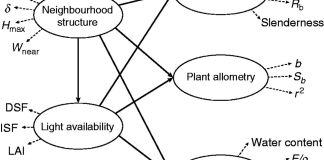 Partial least squares path model to test the effect of ecological factors on plant design. Solid and dashed lines represent the inner and outer model, respectively.